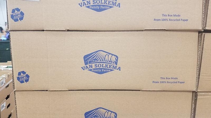 Pratt Industries and Vansolkema Packaging